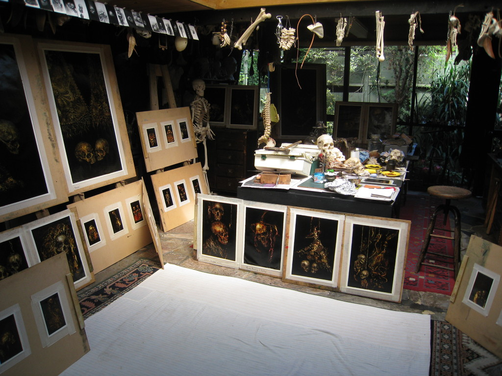 Terry Taylor's studio with paintings surrounding it and skulls on a table
