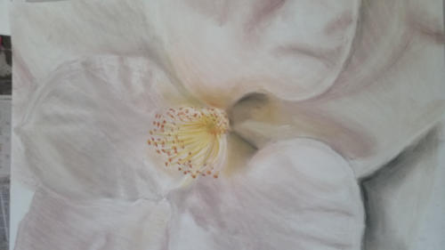 <span>Drawn by a 15 yr old</span><br>Pastel on paper (80cmx 55cm)