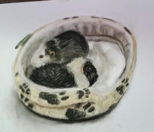 <span>Drawn by a 14 yr old</span><br>Pastel on paper (80cmx55cm)
